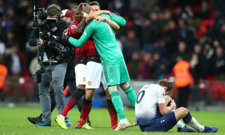 """World-Class"" De Gea perfomance vs Tottenham (VIDEO)"